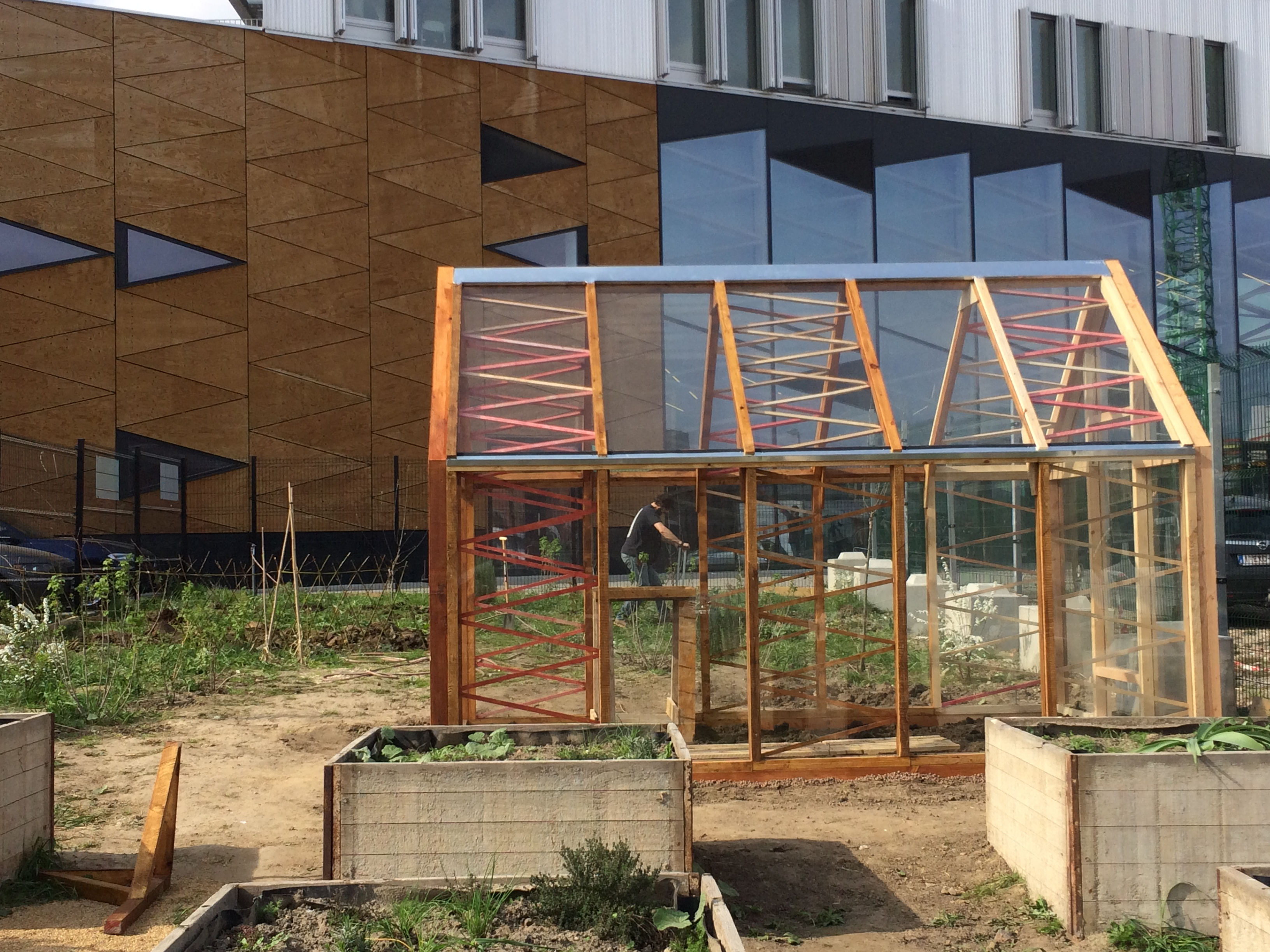The greenhouse collective - The Tomato Chili Project A Greenhouse Designed Built And Marketed Using Circular Economy Principles 13147577_586557304855409_8762037173439999468_o